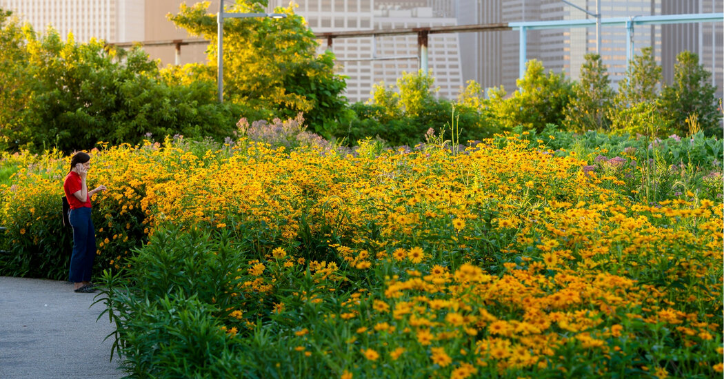 Why You Should Do Your Spring Planting in the Fall